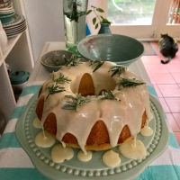 Ottolenghi's Rosemary, Olive Oil and Orange Cake